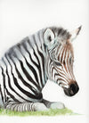 Sleeping Baby Zebra Original Watercolor Painting