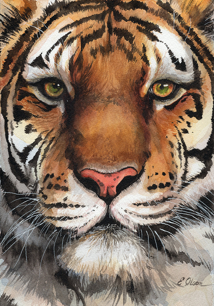 Tiger Face Original Watercolor Painting