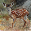 Woodland Fawn Original Watercolor Painting
