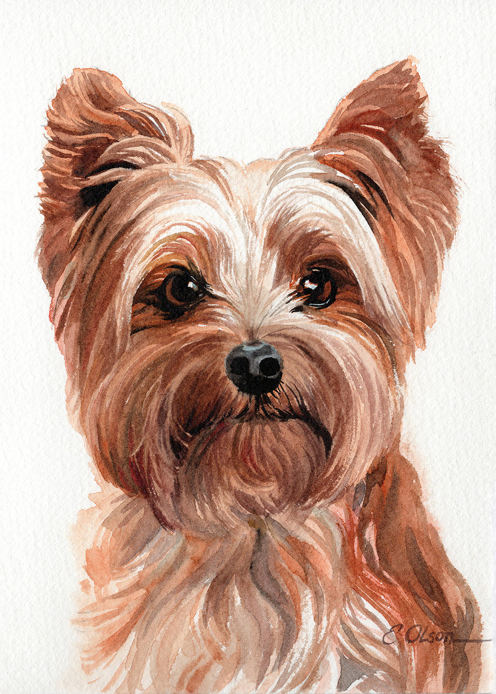 Yorkshire Terrier Original Watercolor Painting