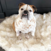 Vegan Fur Orthopedic Dog Cat Bed - mytmworld