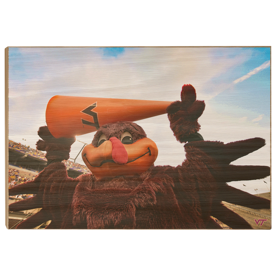 Virginia Tech Hokies - Hokie Bird Cheer