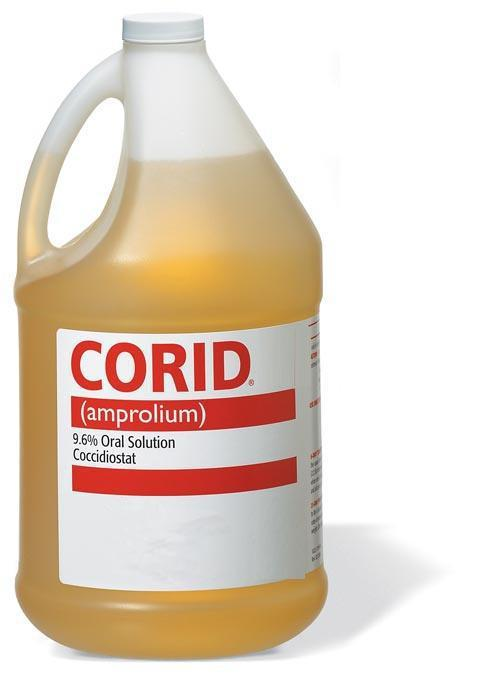 Corid Oral Solution Coccidiostat Treamtment 1 Gallon - Piccardmeds4pets.com