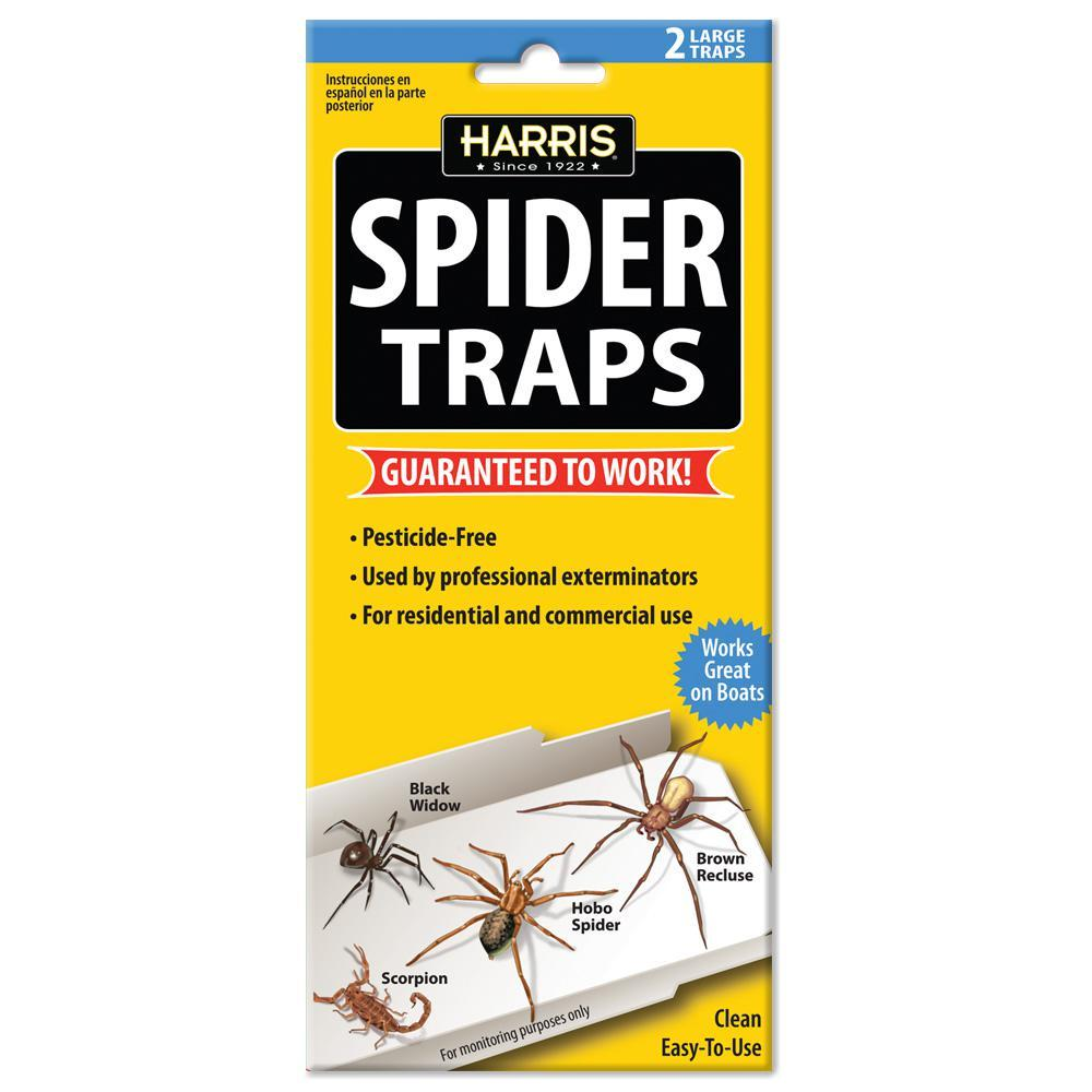 Harris Spider Trap Guaranteed to Work 2-Pack - Piccardmeds4pets.com