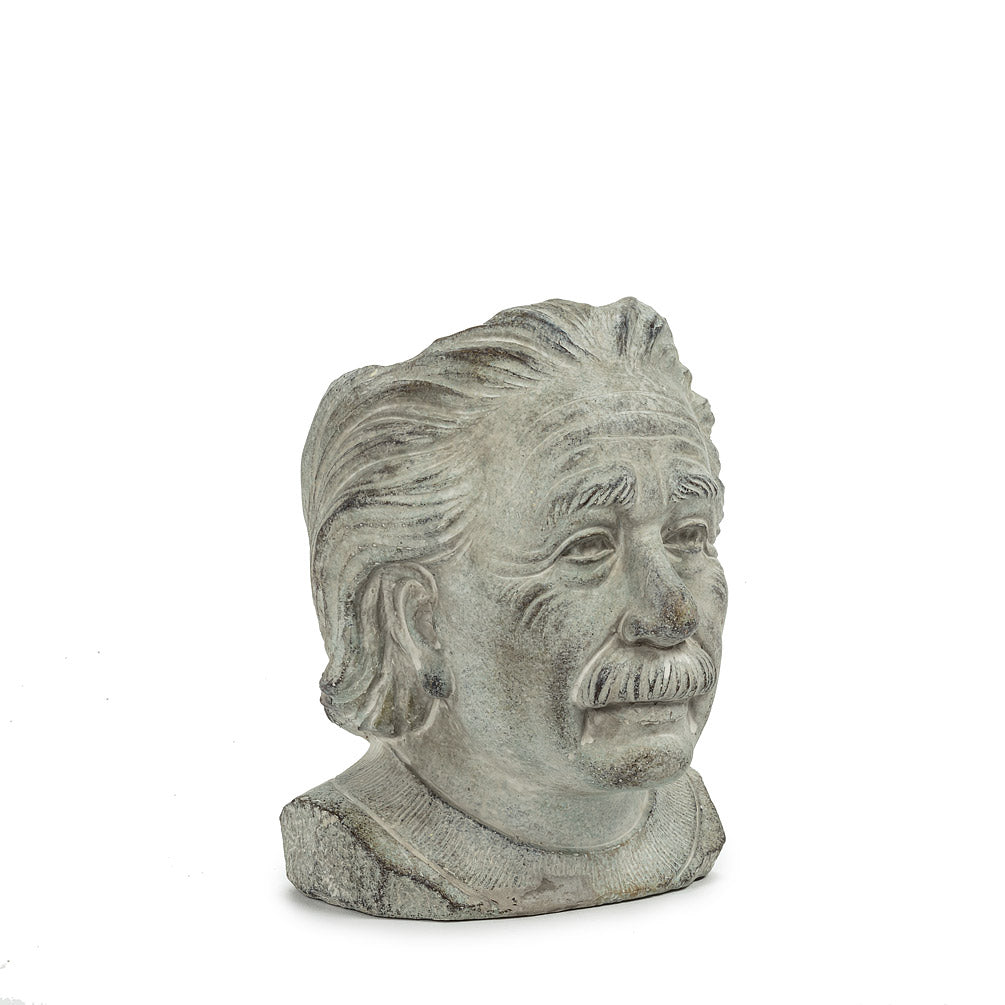 Small Einstein Head Planter