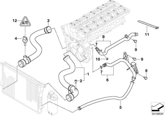 BMW Genuine Cooling System Water Hose