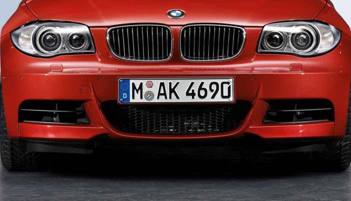 BMW Genuine M Sport Front Lower Centre Grille