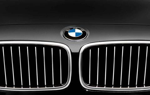 BMW Genuine Front Right Kidney Grille Luxury Line