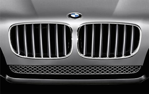 BMW Genuine Front Left Kidney Grille Titanium