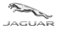 Jaguar lifestyle