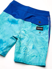 Load image into Gallery viewer, Quiksilver Boys' Big Highline Snapper Youth 17 Boardshort Swim Trunk
