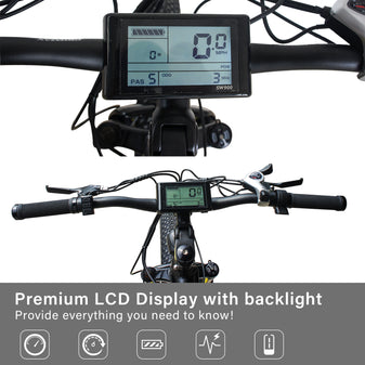 LCD Display with Backlight