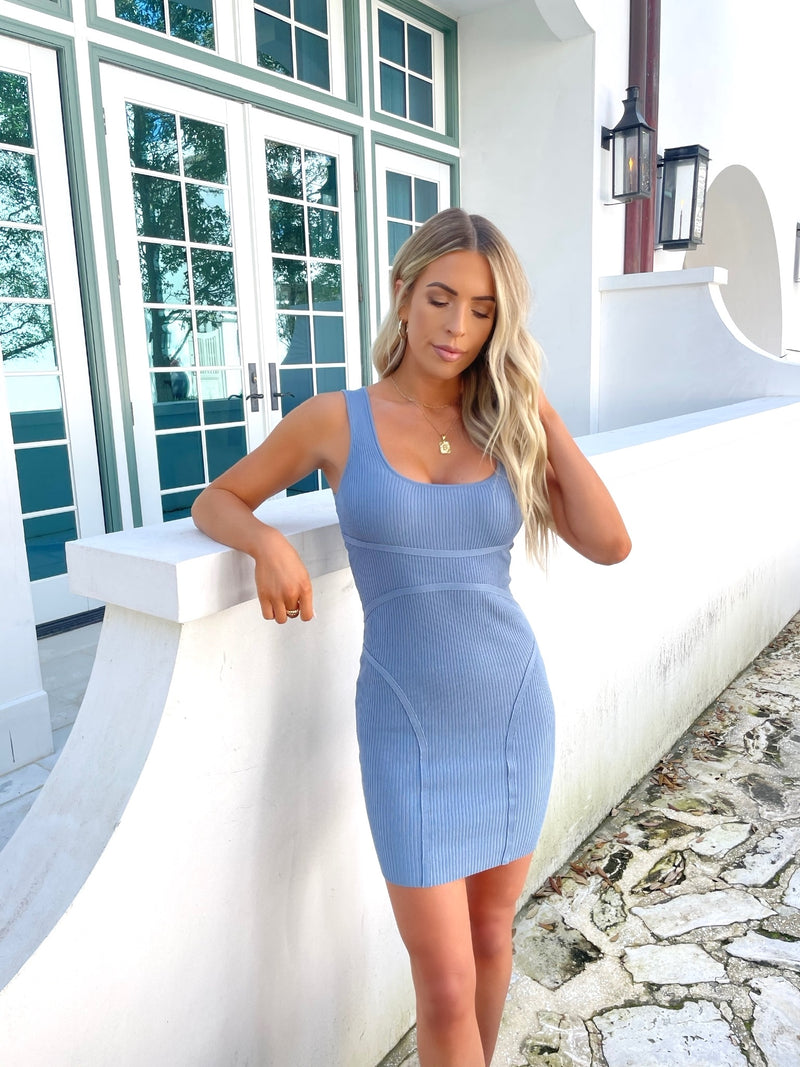 Fitted Ribbed Mini Dress
