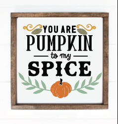 You are pumpkin to my spice