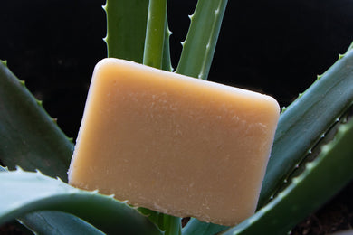 Aloe Aloe Body Soap & Shampoo Bar $9.95