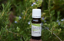 Load image into Gallery viewer, Rosemary Essential Oil (Rosmarinus officinalis)