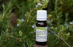 Rosemary Essential Oil (Rosmarinus officinalis)
