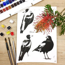 Load image into Gallery viewer, Magpie and Grevillea Cushion Cover Side Canvas Silken Twine Cushion Cover