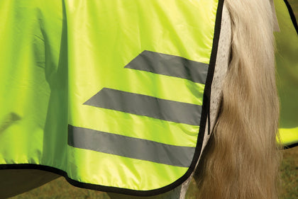 Horse and Rider Safety