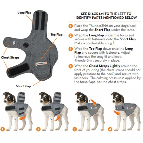 fitting guide thundershirt