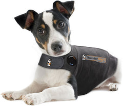 original thundershirt