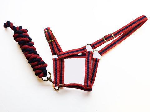 Harlequin Headcollar And Rope Set