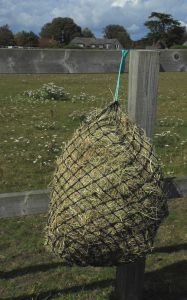 Greedy Feeder HayNet