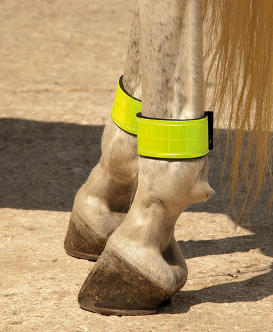 Neoprene Lined Reflective leg Bands
