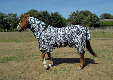 Sahara Zebra Print Full Neck Fly Rug