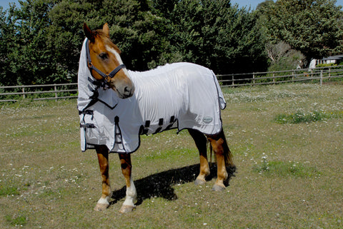 Sahara Full Neck Fly Rug