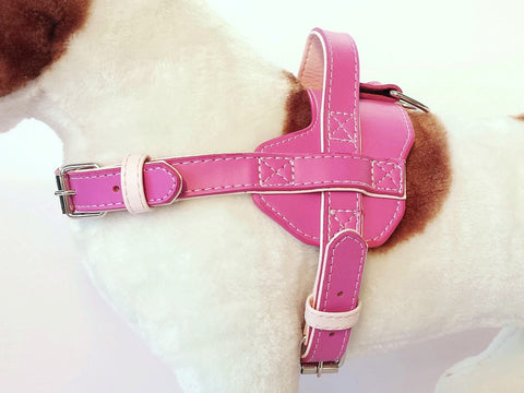 Fusion Leather Harness