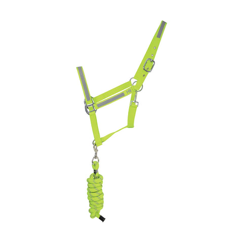 Reflector Head Collar and Lead Rope