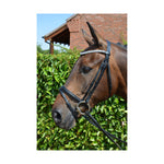 Diamond Flash Bridle with Rubber Reins