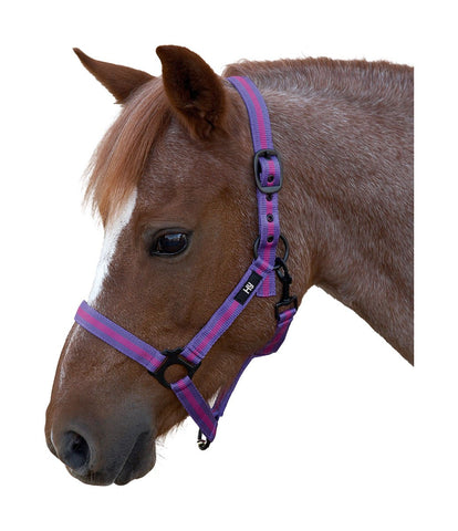 Duo Head Collar