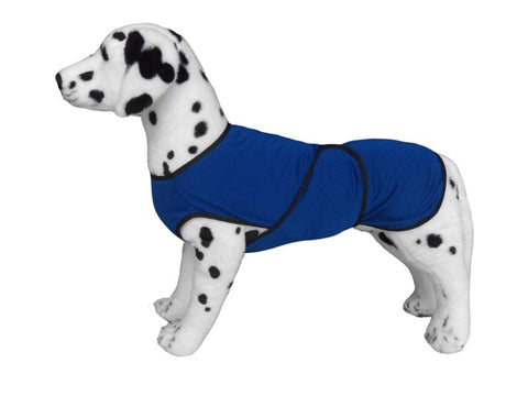 Dog cooling Coat