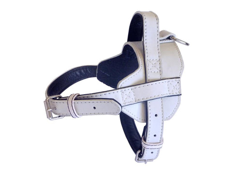 White Fusion Leather Harness- small