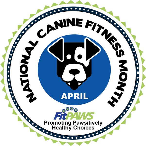 April is Canine Fitness Month!  How much exercise does your dog need everyday?
