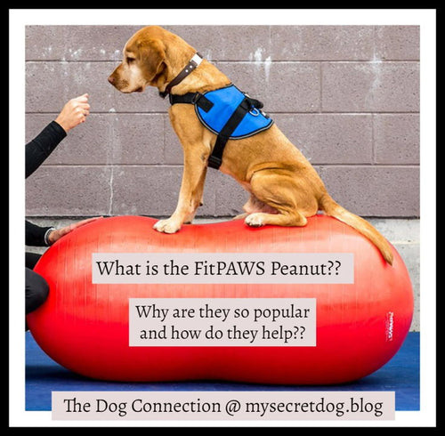What is a FitPaws Peanut?