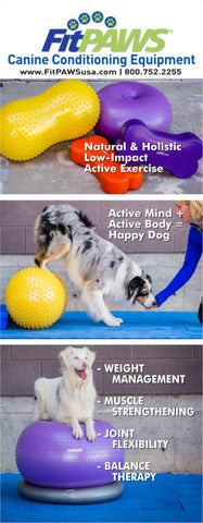 FitPAWS canine fitness month