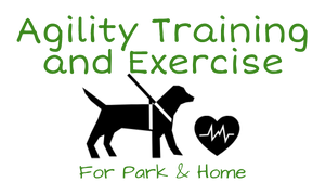 Dog Agility Training and Exercise