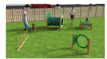 Dog Agility equipment