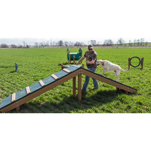 BarkPark Recycled - Hilltop Challenge, Free Shipping