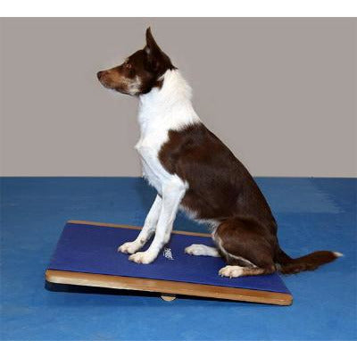 Dog gym, dog exercise equipment, agility training equipment, rocker board