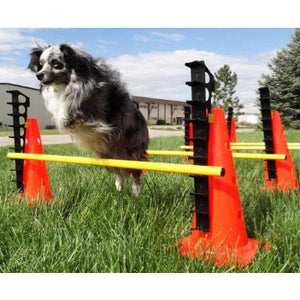 dog agility equipment, hurdle set