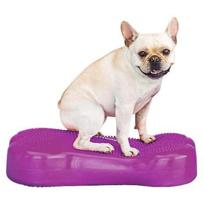 fitbone, dog exercise equipment, dog agility equipment