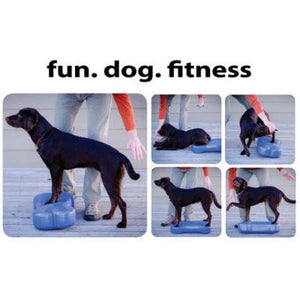 fitbone dog exercise