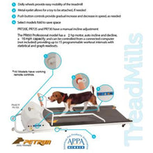 Dog gym, dog exercise equipment, dog treadmill, dog exercise treadmill