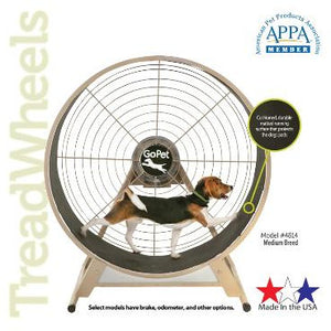Dog gym, dog exercise equipment, agility training equipment, dog treadwheel