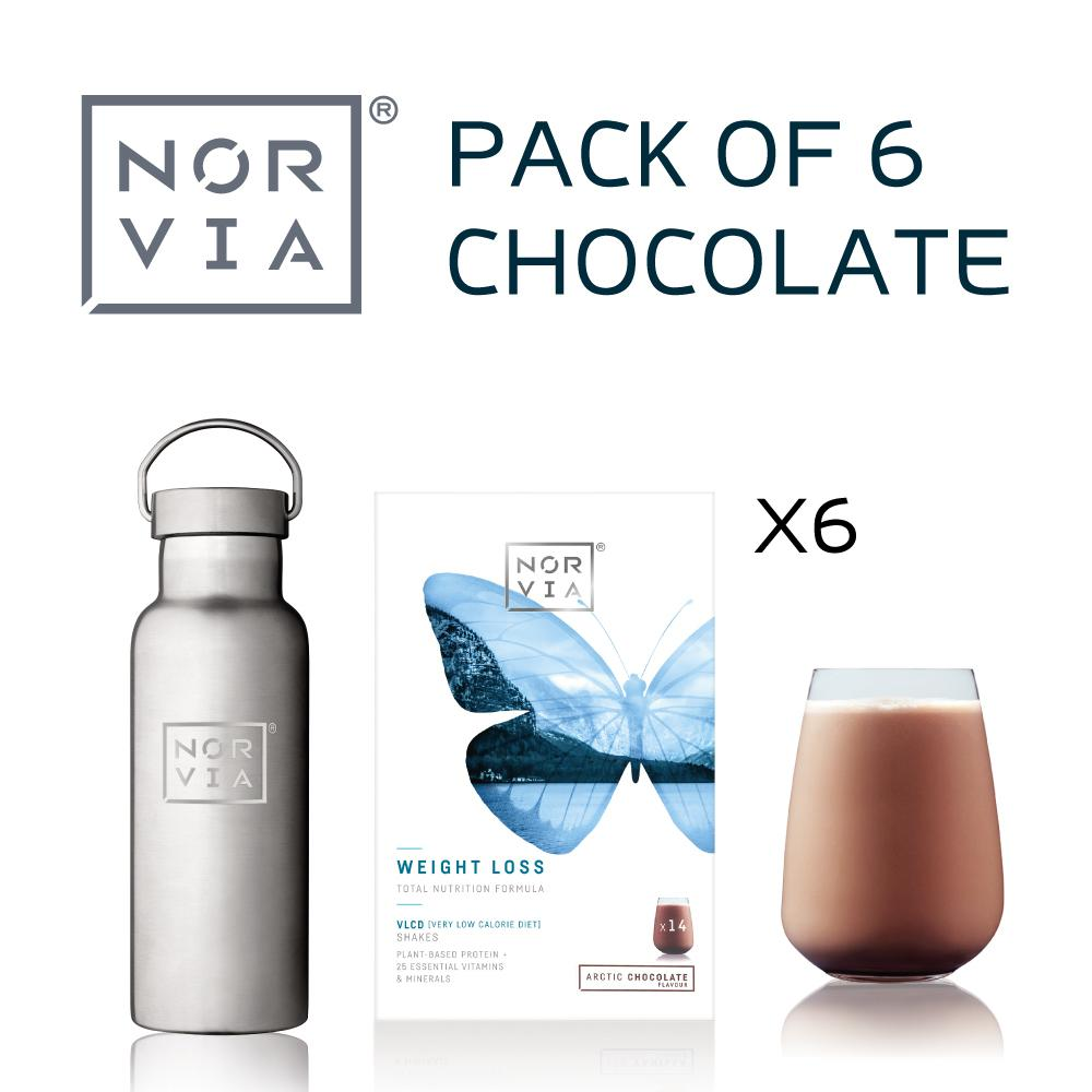 Norvia - 6 Pack Choclate