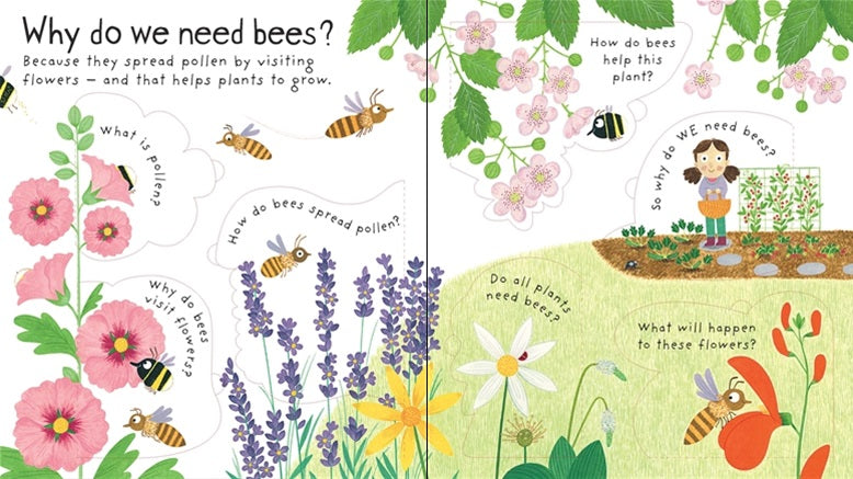 Why Do We Need Bees? A Lift The Flap Book